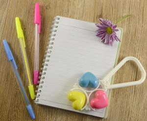 First Trimester Shopping List, pregnancy journal