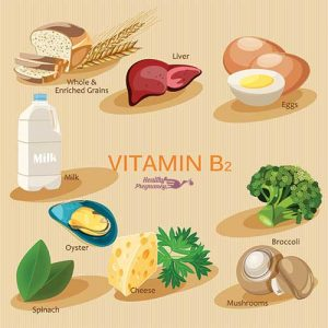 The Power of B Vitamins in Prenatal Nutrition 1