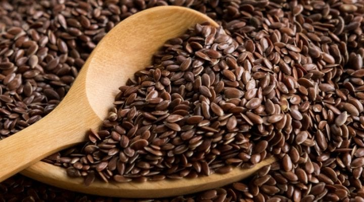 Impact of Maternal Flaxseed During Pregnancy