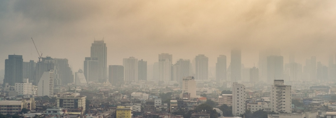 How Air Pollution Can Impact Your Pregnancy 1